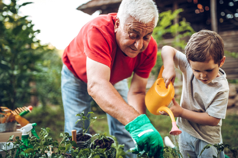 What Visitation Rights Do Grandparents Have?